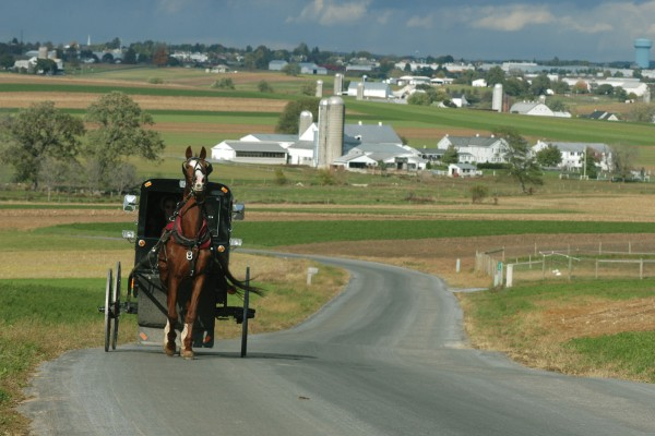 Amish Buggy at night