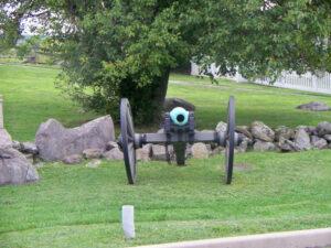 Cora cannon